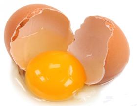 Guia da dieta: quais alimentos são ricos em proteína?