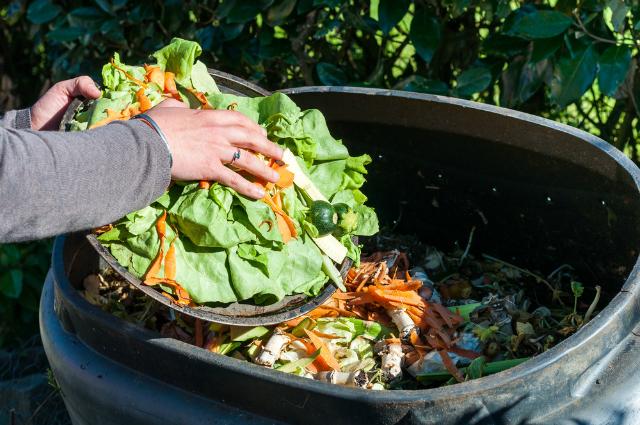Como reduzir o desperdício de comida em restaurantes